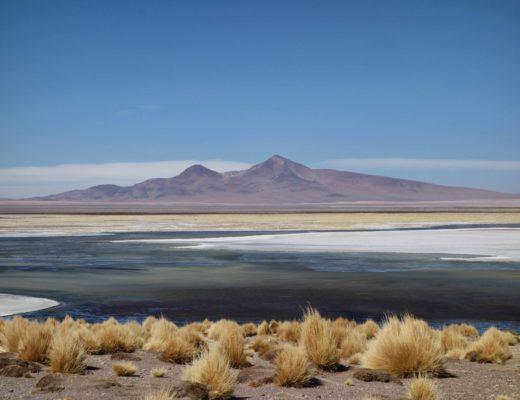 San Pedro Atacama - Salar de Tara