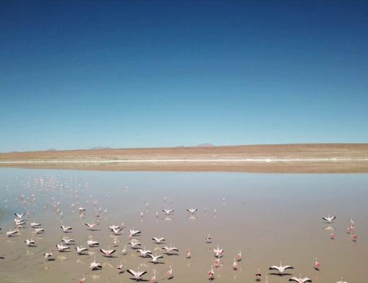 Salar Uyuni Video Drone