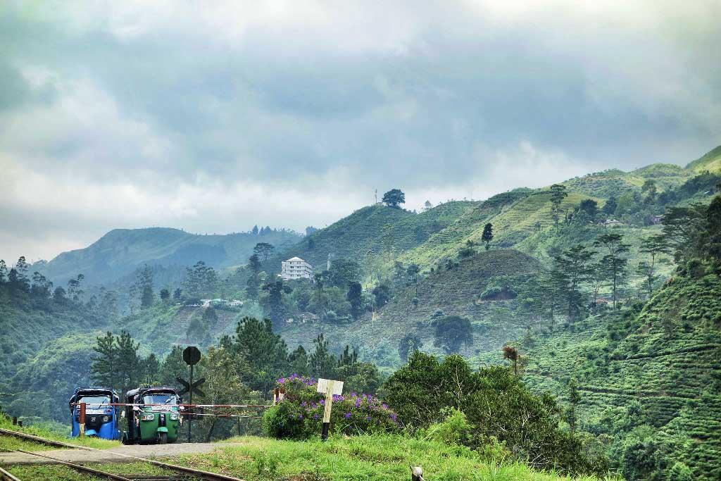 Sri Lanka Montagnes de Kandy a Ella