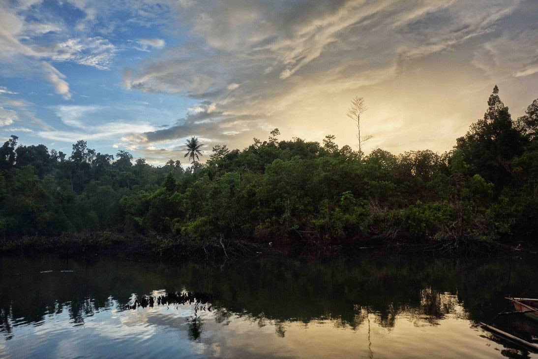 togian tumbalawa mangrove